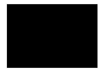 Certificazione CE - RIBCO S.r.l.